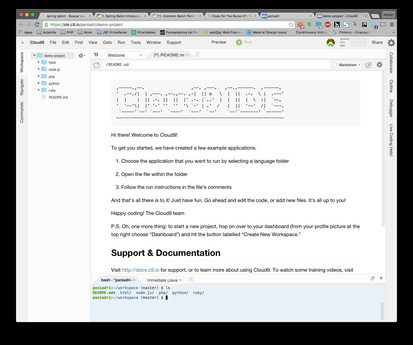pantalla de bienvenida del proyecto