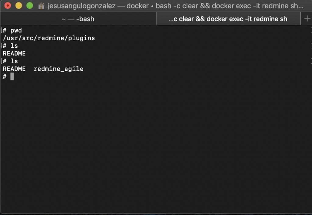 Directorio de plugins de Redmine en el Docker tras copiar el plugin