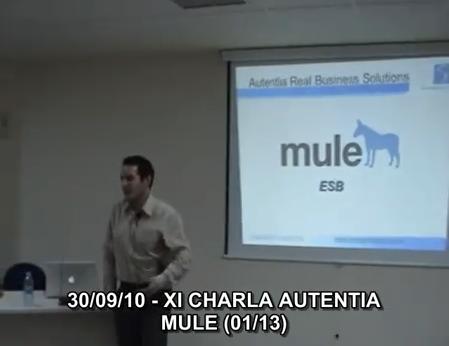 alvaro-mule