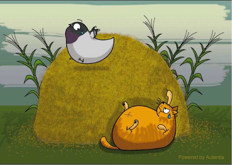 Gatos y palomas en silo de trigo