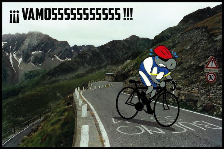Mosca bici dolomitas